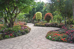 Blumiger Garten der Auslegung Stockbilder