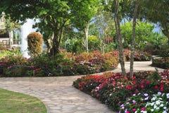 Blumiger Garten der Auslegung Lizenzfreies Stockbild