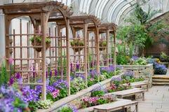 Blumiger Garten mit bunten Anlagen und Mustern Stockbild