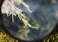blur Royalty-vrije Stock Foto's