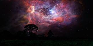 Free Blur Ancient Stardust Nebula Back On Night Cloud Sky Over Silhouette Forest Royalty Free Stock Image - 164732126
