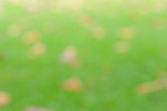 Blur background Stock Photos
