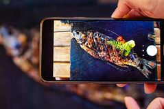Blur on the background baked in spices carp shot on a smartphone for social networks. Stock Image
