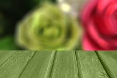 blur background image of color roses Royalty Free Stock Images