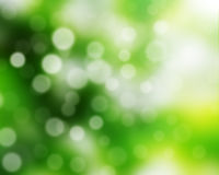 Blur background. Of natural green bright stock photo