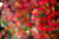 blur Stock Photo