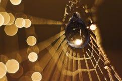 Blur, Bokeh, Bright Stock Images