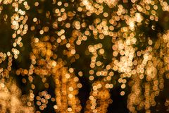 Blur - bokeh - Decorative outdoor string lights hanging on tree in the garden at night time stock photo