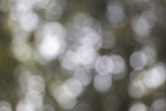 Blur bokeh texture wallpaper Royalty Free Stock Images