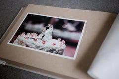 Blur, Close-up, Focus, Photo Stock Photography