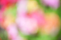 Blur colorful effect bokeh holiday Royalty Free Stock Images