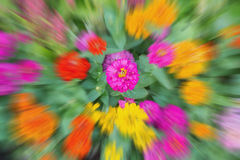 Blur colorful nature can be use for background Stock Image
