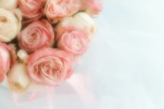 Blur effect, soft focus flowers background with bouquet of pale pink  roses. On the white linen fabric background .Beautiful Holiday background.copy space Royalty Free Stock Images
