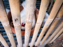 Blur of Female Bantam Sit on Eggs. The Blur of Female Bantam Sit on Eggs in The Wooden Coop,Focus in The Wooden Coop stock images