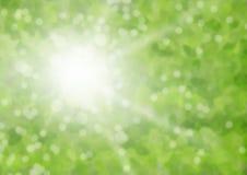Blur flare. Sun flare on bokeh green Royalty Free Stock Image