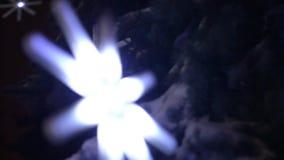 BLUR FLASHING SNOWFLAKES ON THE CHRISTMAS TREE stock video footage