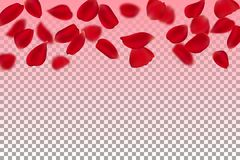 Blur floating red roses petal Royalty Free Stock Photography