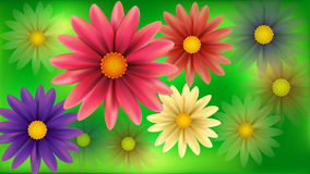 Blur flowers abstract background. Royalty Free Stock Images