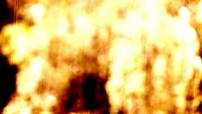 Blur gold rain background stock video footage