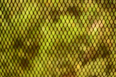 Blur green abstract small rectangular pattern Royalty Free Stock Photography