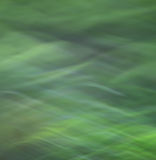 Blur green background Stock Photos