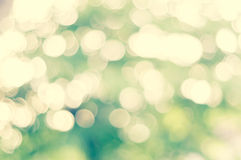 Blur green nature background Stock Image