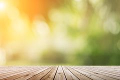 Blur green nature bokeh with sun light on copy space empty, old royalty free stock photos