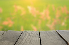 Blur image of Agriculture terrace wood and Beautiful rice field  meadow Stock Image