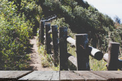 Blur image of Kew Mae Pan Nature Trail & x28;Doi Inthanon National Pa Stock Photos