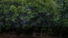 Blur image of raining. Royalty Free Stock Image