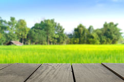 Blur image of terrace wood and agriculture life Stock Photography