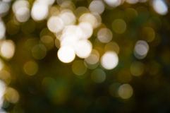 Blur light bokeh green and yellow Royalty Free Stock Photography