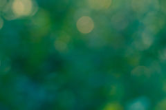 Blur lights , defocused background  green. Royalty Free Stock Images