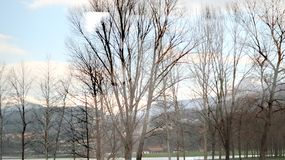 Blur nature landscape of village and tree and green field the wa royalty free stock photography
