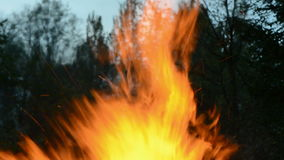 Blur night fire flame  background Stock Photo