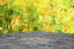 Blur orange flower background Stock Photos
