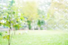 Blur park with bokeh light background, nature, outdoors, garden, spring and summer season stock photo