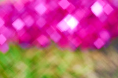Blur pink and green Royalty Free Stock Photo