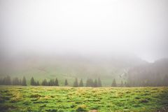 Blur scene of meadows above the mountain forest after the rain mist, giving the magic charm of Bucegi mountain Romania stock photo