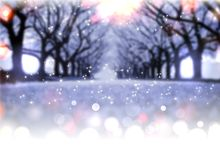 Blur snowy Avenue in winter Park Royalty Free Stock Image