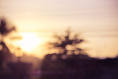 Blur sunset. Vintage blur sunset at front yard Royalty Free Stock Image