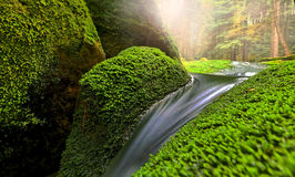 Blur of waterfall in sunny forest. Blur of waterfall over green hillside in sunny forest stock image