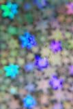 blured的抽象背景 库存图片