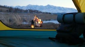 Blured bild av att campa och tältet med den höga grained bilden för iso under pinjeskogen i solnedgång20-tal 4k arkivfilmer