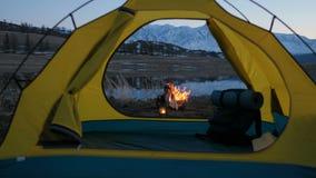 Blured bild av att campa och tältet med den höga grained bilden för iso under pinjeskogen i solnedgång20-tal 4k stock video