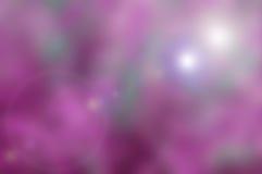 Blured naturbakgrund med rosa lilasignal Arkivfoto