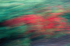 blurrbakgrund Royaltyfri Bild