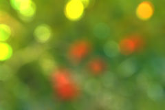 Blurred abstract background bokeh Royalty Free Stock Images