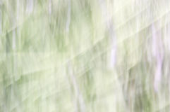 Blurred abstract background. Green purple and white. Royalty Free Stock Photos