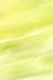 Blurred abstract background. Pastel green. Stock Image